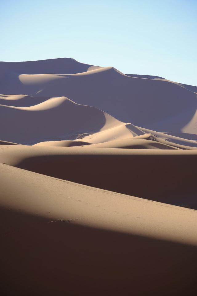 Tall, sinuous dunes of tans and browns with shadows running down their slopes.